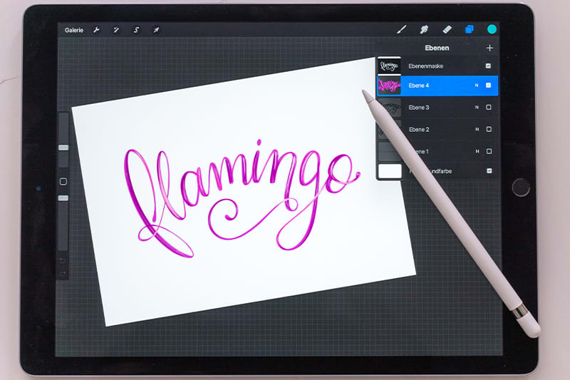 Flamingo iPad Lettering