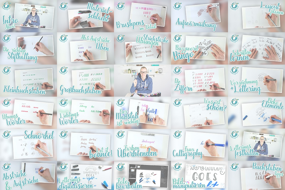 Über 45 Video Lektionen