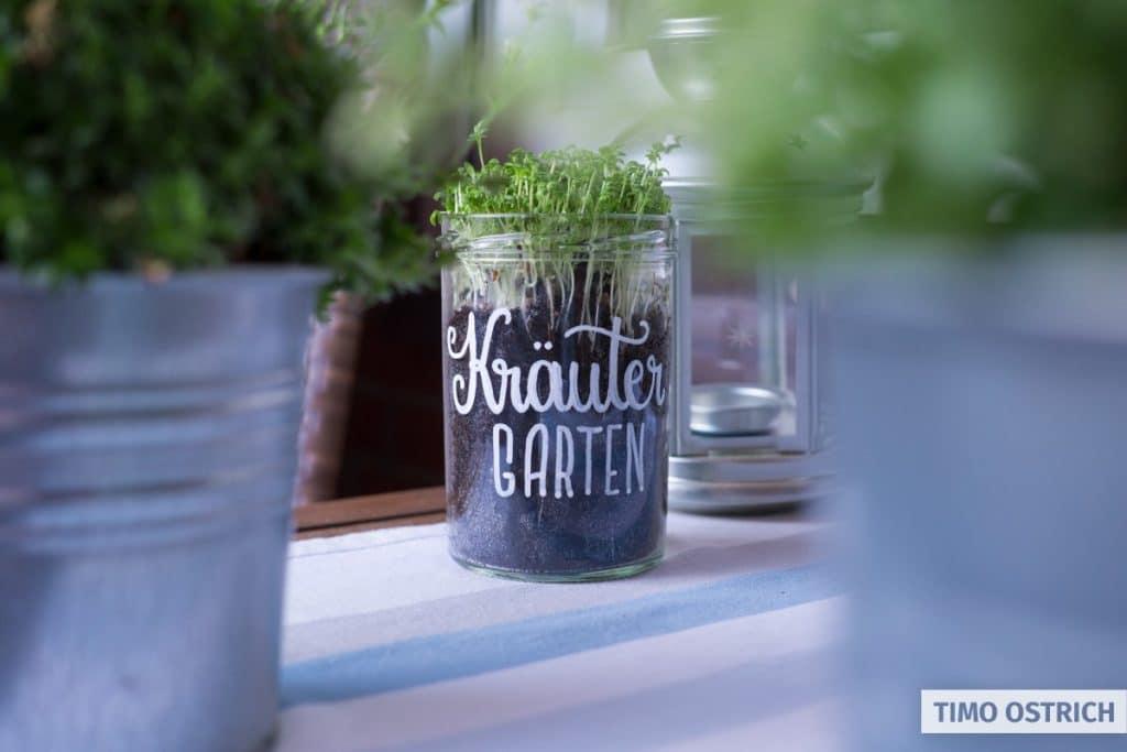 Ein ganz ganz kleiner Kräutergarten im Glas